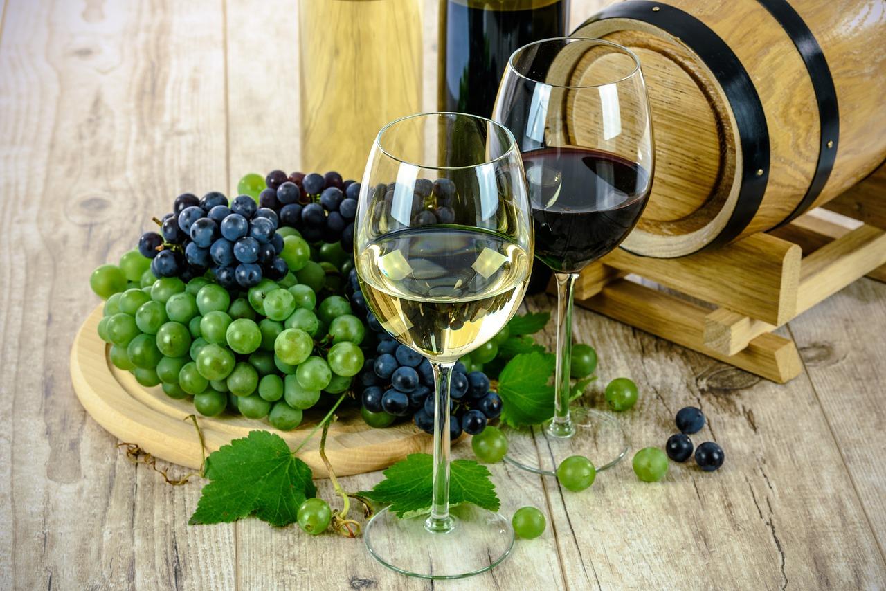 Quels verres pour servir les vins ?